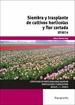 Siembra y trasplante de cultivos hortícolas y flor cortada