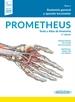 PROMETHEUS:Texto y Atlas Anatom.5Ed.3T + e-book